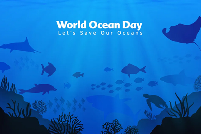 You are currently viewing World Ocean day 2021